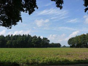 calhornlandschaft